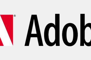 Adobe Flash Player – erneut gefährliche Sicherheitslücke entdeckt
